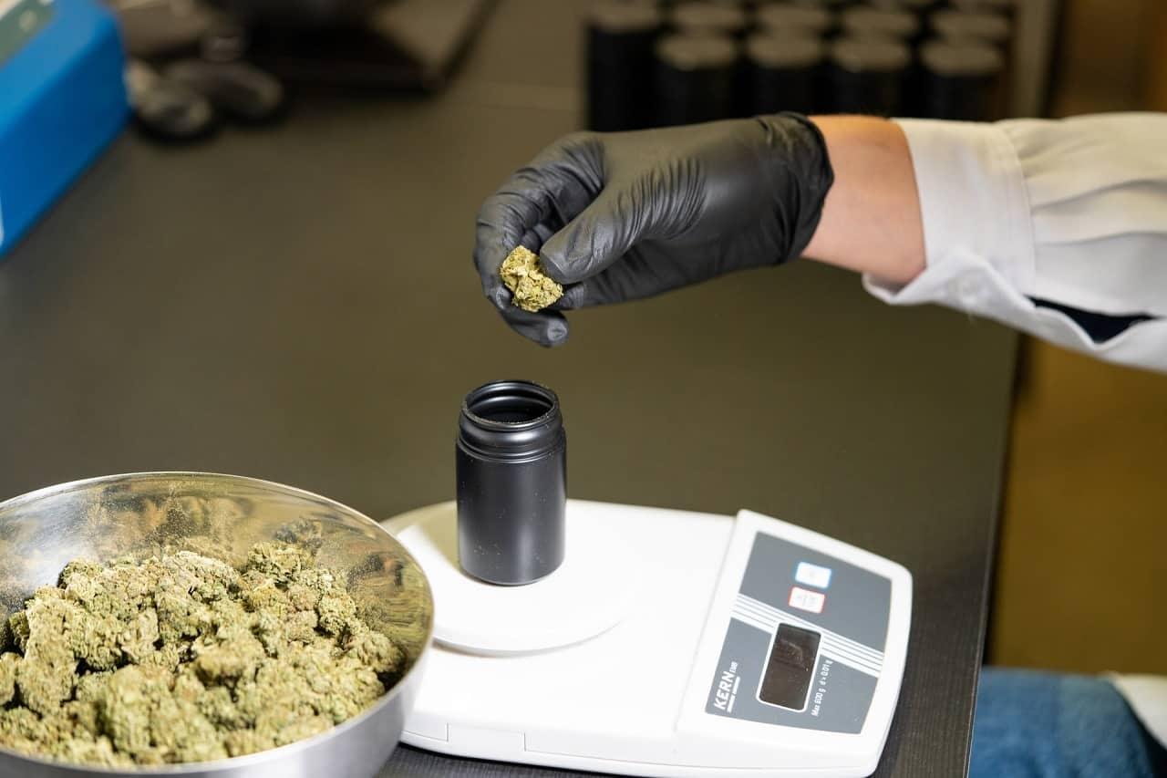 cannabis in retail shop